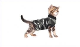 Recovery Vest for cats