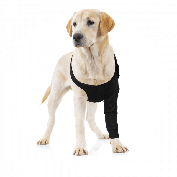 RECOVERY SLEEVE® CHIEN