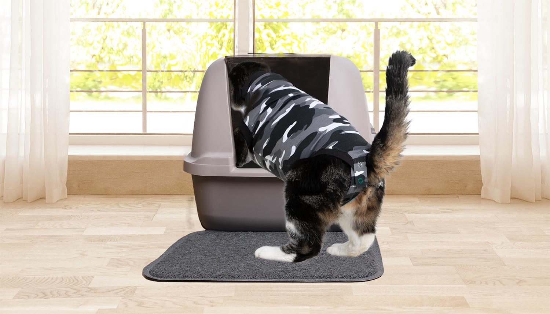 suit cat litter box